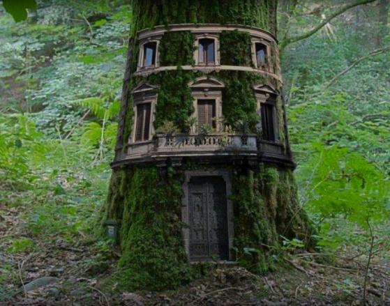 Faery_House.1.jpg