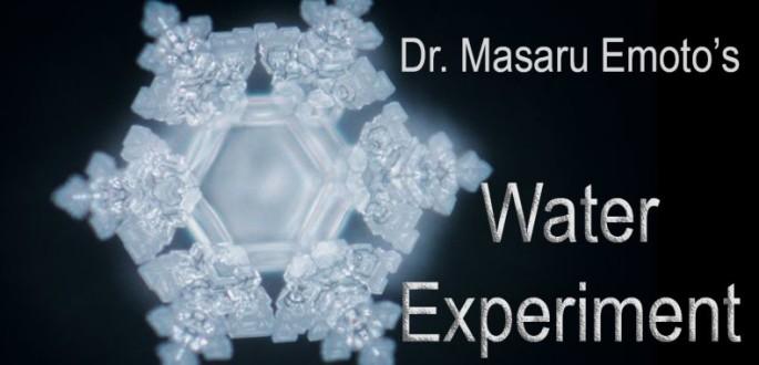 Water-experiment-dr-masaru-emoto-790x381.jpg
