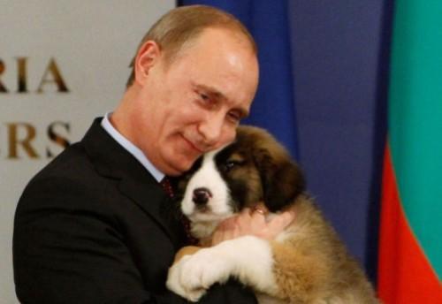 Animal-lover-Putin-1-500x344.jpg