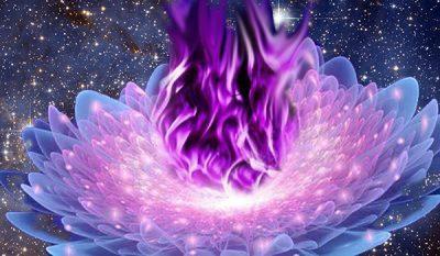 Violet-Flame-e1461605348890-1.jpg